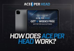 How Does ACE Per Head Work?