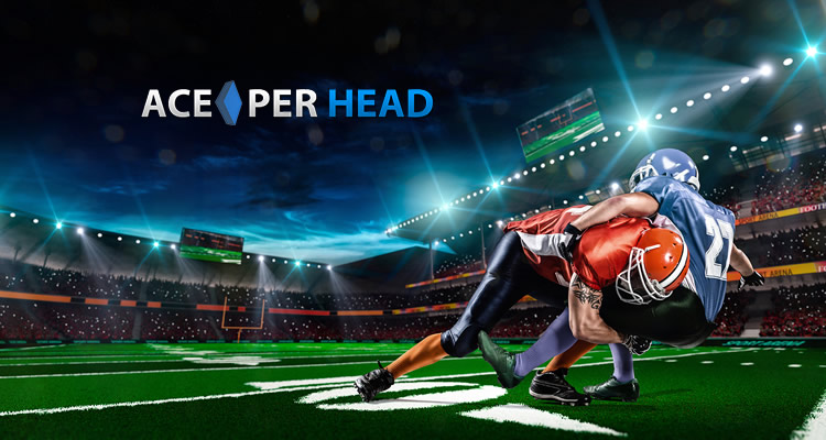Pay Per Head Live Betting