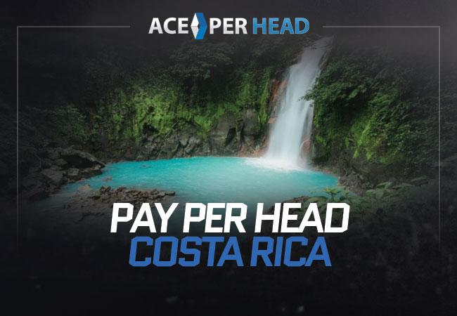 Pay Per Head Costa Rica