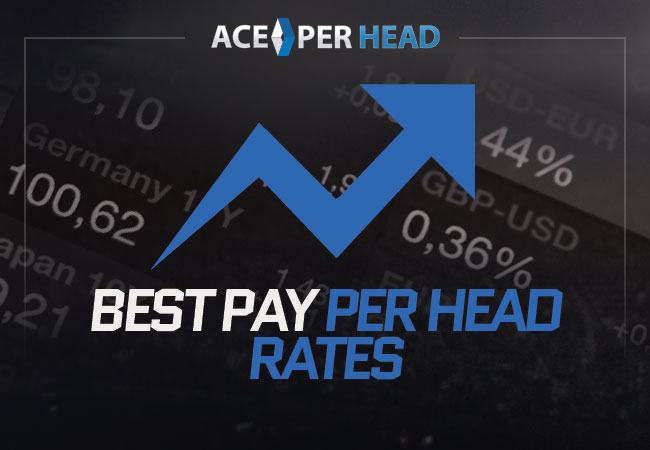 Best Pay Per Head Rates